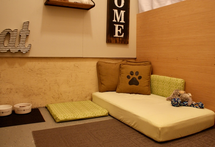 Dog Room Decor Decorating On A Budget
